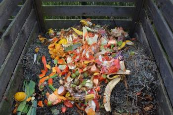 Here is the Complete Guide on How to Composting at Home
