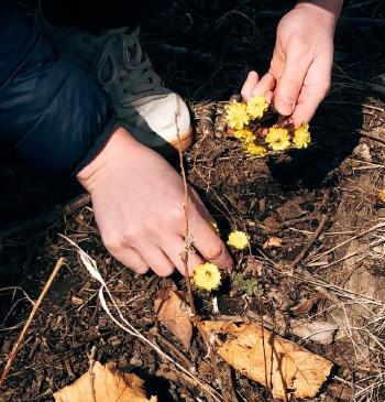 Smelly Compost? How to Control Bad Smell on Your Compost