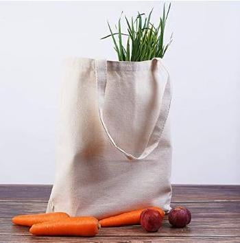Canvas bag with vegetables.