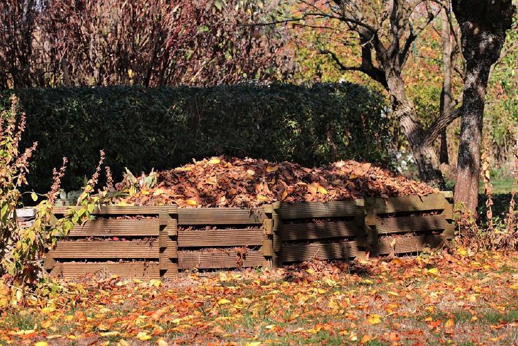 pallets full of brown leaves