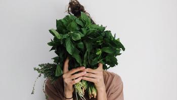 How to Go Vegan with no Setbacks, Especially for Beginners