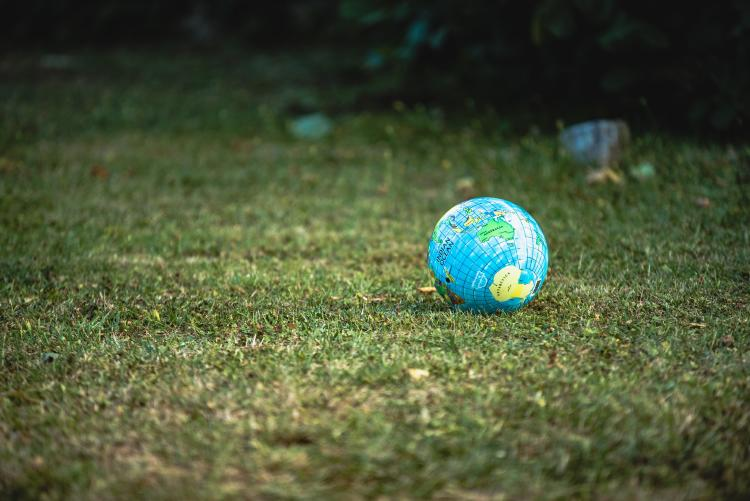 A globe laying on the grass