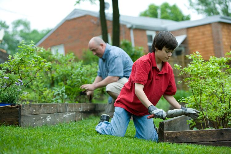 A man and a boy working on a garden