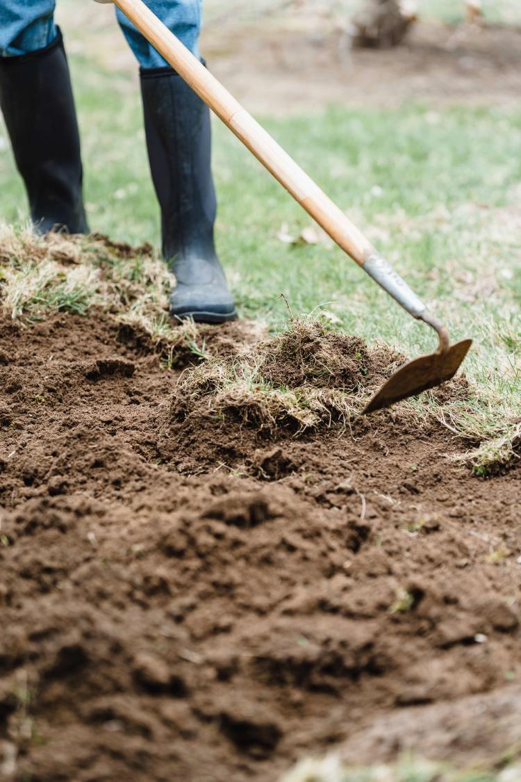 Compost into soil process