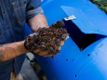 Compost Tumbler vs Bin: Find Out the Pros and Cons