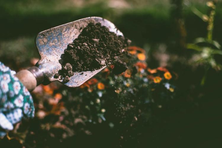 person digging out soil using garden shovel