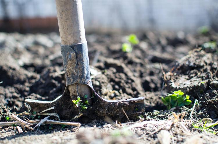 brown shovel on soil