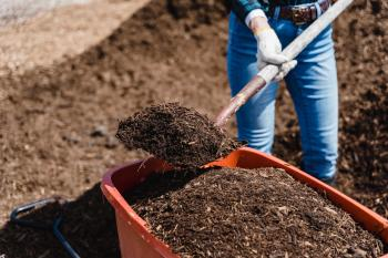 The Top 10 Vermicomposting Bins to Start your Own Worm Farm