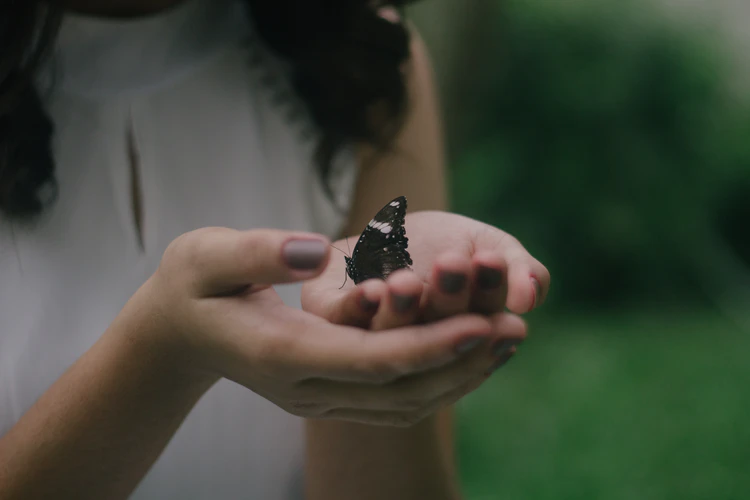 woman holding a black butterfly on her hands