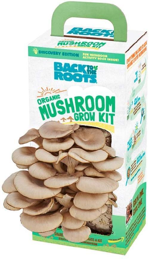 mushrooms 3A