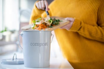 How to Start Composting? Everything You Need To Know About It
