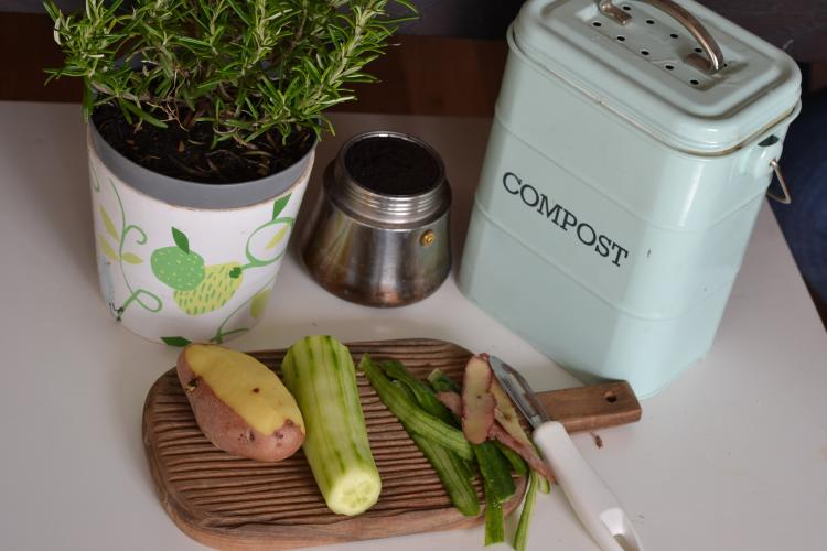 a compost bin in the kitchen with food scraps