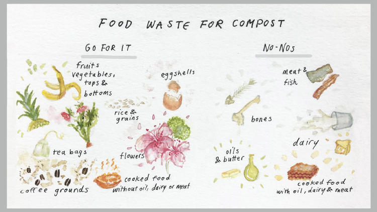 greens and browns for compost