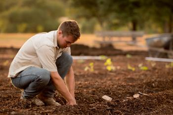 Complete Guide on Where to buy bulk compost near you