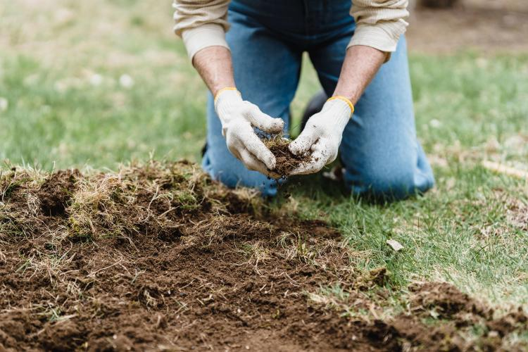 Introduction of compost into soil