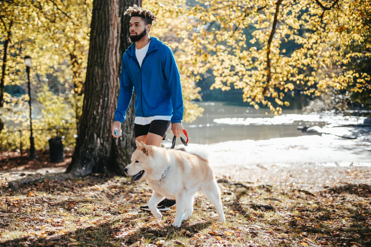 picture of afro american man walking his dog in the park