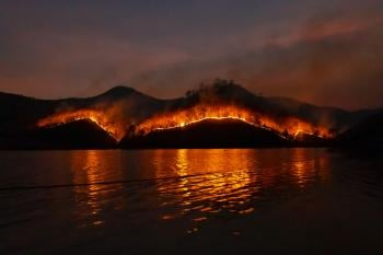 Australia fires: what caused them? and what is it impact on the environment?